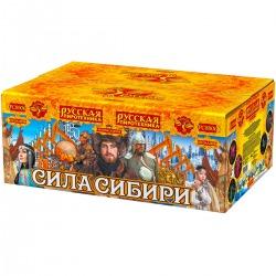 """Сила Сибири (1,2"""" x 150)"""